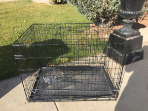 Dog wire crate.