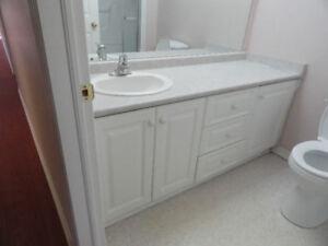 Used Large Bathroom Vanity in good shape