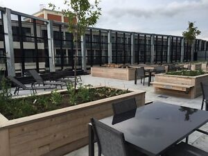 New 1 Bdrm + Den Downtown Kitchener Condo with Private Terrace Kitchener / Waterloo Kitchener Area image 9