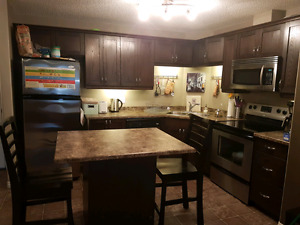 Fully furnished 2 bedroom 2 bathroom condo -- steps from LRT