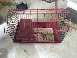 Guinea pig cages and accessories for sale