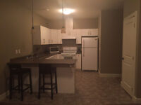 2 bedroom furnished suite available East Abbotsford