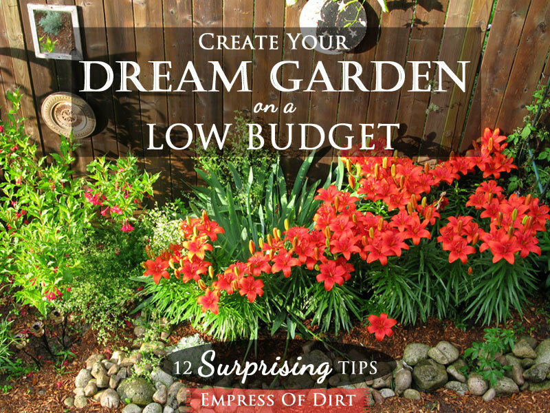 12 Surprising Tips Create Your Dream Garden on a Low Budget eBay