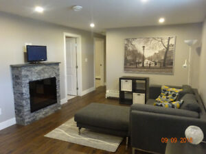 Newer 2 Bedroom Suite in Douglas Park available October 15th