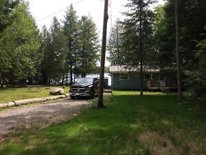 Quiet getaway in cottage country ~Shallow sandy lakefront