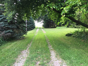 Full Service Farm/Cottage/Home Cleaning. London Ontario image 3