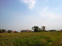 Land, Farm or Acreage for Rent / Share / Crop Share / Other Idea