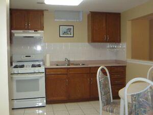 Luxury Basement Apartment in Prime Location