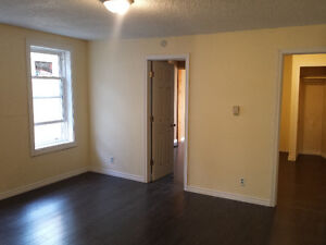 Downtown 3 bedroom apartment unit! Students only!