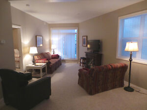 Avail Immed -2 bed, 2 bath fully furnished condo- fort sask Strathcona County Edmonton Area image 9