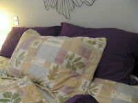 6 piece Duvet cover and accessories
