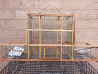 budgie and bird traps cage for sale