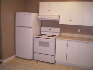 One Bedroom Basement Apt in Cowan Heights (Washer & Dryer inc)