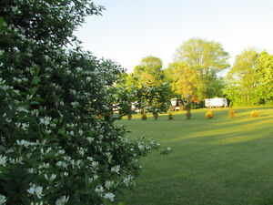 Campground Sale: 1.5 Km fr Lake Erie / Pt Burwell + 14 acres London Ontario image 5