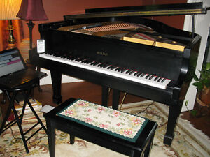 Duane's Piano Tuning and Technology