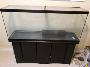 Fish Aquarium 40 Gallon