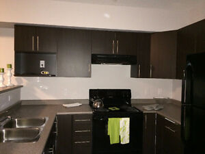 Rent Incentives in A Brand New Building Edmonton Edmonton Area image 2