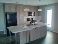 Beautiful New 2 Bedroom Condo for Rent in Sylvan Lake