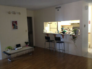 Downtown / Chinatown room rental