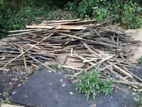 Free firewood perfect for bomb fire night