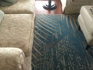 Room Collection area rug. NEAR NEW!