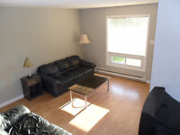 Room for Rent Close to Downtown and Trent Express Bus