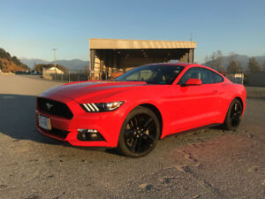 2015 Ford Mustang EcoBoost Performance Pack, 15,900kms Like New
