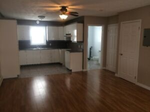 2 bedroom townhouse style apartment in Grand Falls for rent