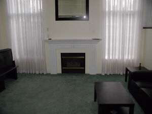Professionals/Grad Students! Save $$ and still live comfortably! Kitchener / Waterloo Kitchener Area image 6