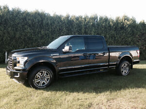 2015 Ford F-150 Autre