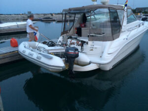 TITAN TENDER DINGHY AND CADDY (RIB 310) *****$6500 OR BEST OFFER