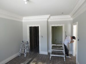 HIGH QUALITY PAINTING .. FAIR PRICES .. HOMES, APTS, NEW BUILDS