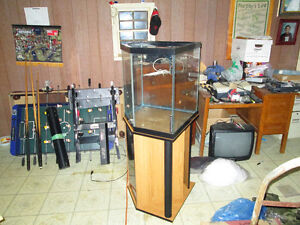 45 Gallon Corner Fish Tank with Stand and Accessories
