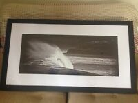 Framed Large Black and White Photograph