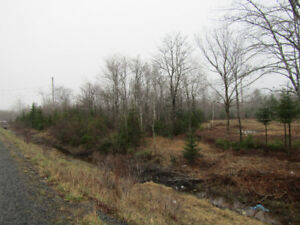 FOUR SURVEYED APPROVED LOTS PLUS 49 ACRES-HALIFAX