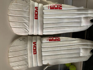 Youth Cricket Pads (used)