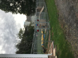 Eastern Fencing, dog shelter, dog bridge, dog agility tunnel