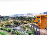Room Wanted for One In Osoyoos