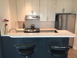 Large 2 bed, 2 bath downtown condo! Furniture package optional