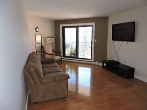 Recently reno'd partially furnished 2 bedroom, 1 Bathroom apt.
