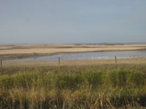 Acreage - 5 Bare Acres For Sale, Only 45 minutes East of Calgary