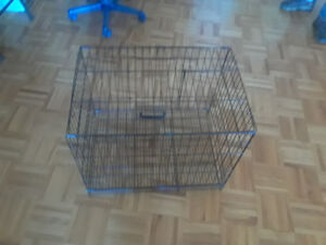 cage a chien moyen