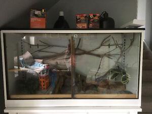 Reptile Terrarium & Accessories
