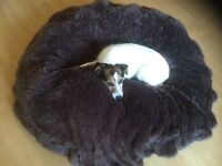 Large Dog Bed - Dog not included!!