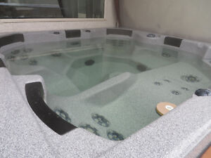 2010 Canadian  hot tub