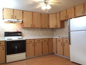 2 bedroom apartment utilities included  St. John's Newfoundland image 1