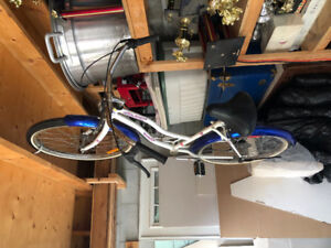 Classic Ladies Bicycle For Sale