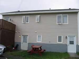 2 Apt + In Law Suite, Many Beautiful Features! St. John's Newfoundland image 8