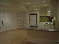 Spacious Recently Renovated Basement Apt - Parkdale-Roncesvalles