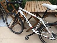 Dawes Espoir 3000 road bike w winter tyres